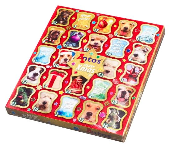 Doggy Christmas Advent Calendar / Selection Box